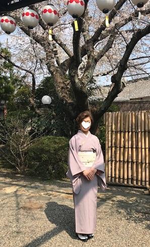 北野をどり・桜の下の着物姿・京都の桜も今週末が見頃_f0181251_18141024.jpg