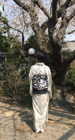 北野をどり・桜の下の着物姿・京都の桜も今週末が見頃_f0181251_1820739.jpg