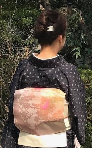 北野をどり・桜の下の着物姿・京都の桜も今週末が見頃_f0181251_18371489.jpg