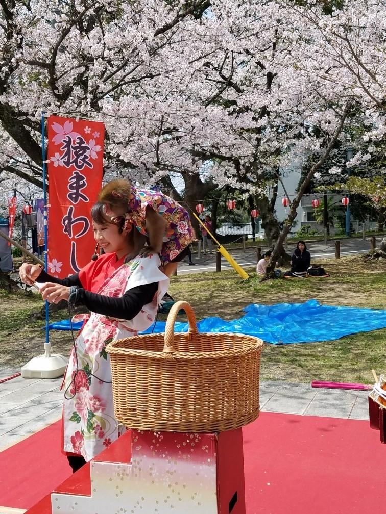 ❤ 満開の桜に会いに・・・_b0313261_14583233.jpg