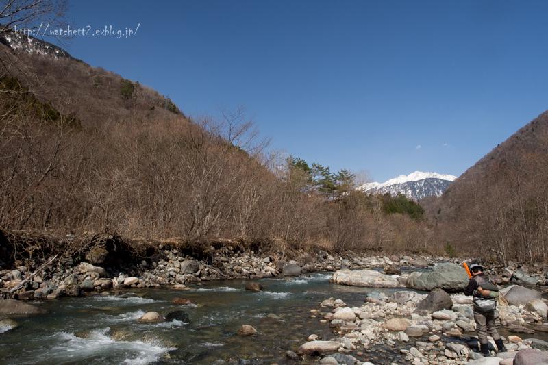 ほとんど蒲田川で過ごしてます・・_e0136764_16142506.jpg