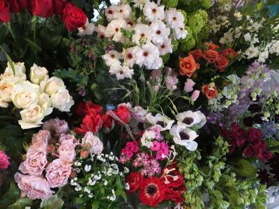 オークリーフ(市川バラ園さんの薔薇の花たち)_f0049672_19224869.jpg
