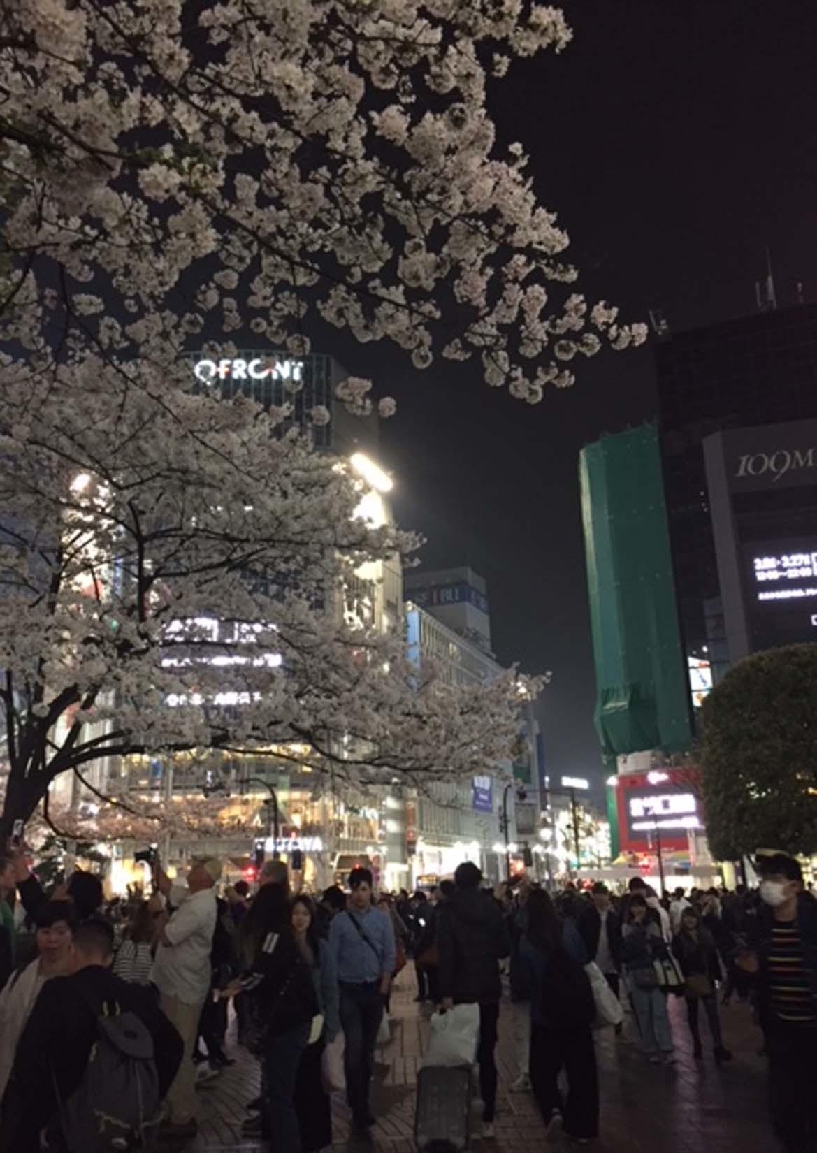 東京旅行-1/2_e0215179_11255777.jpg