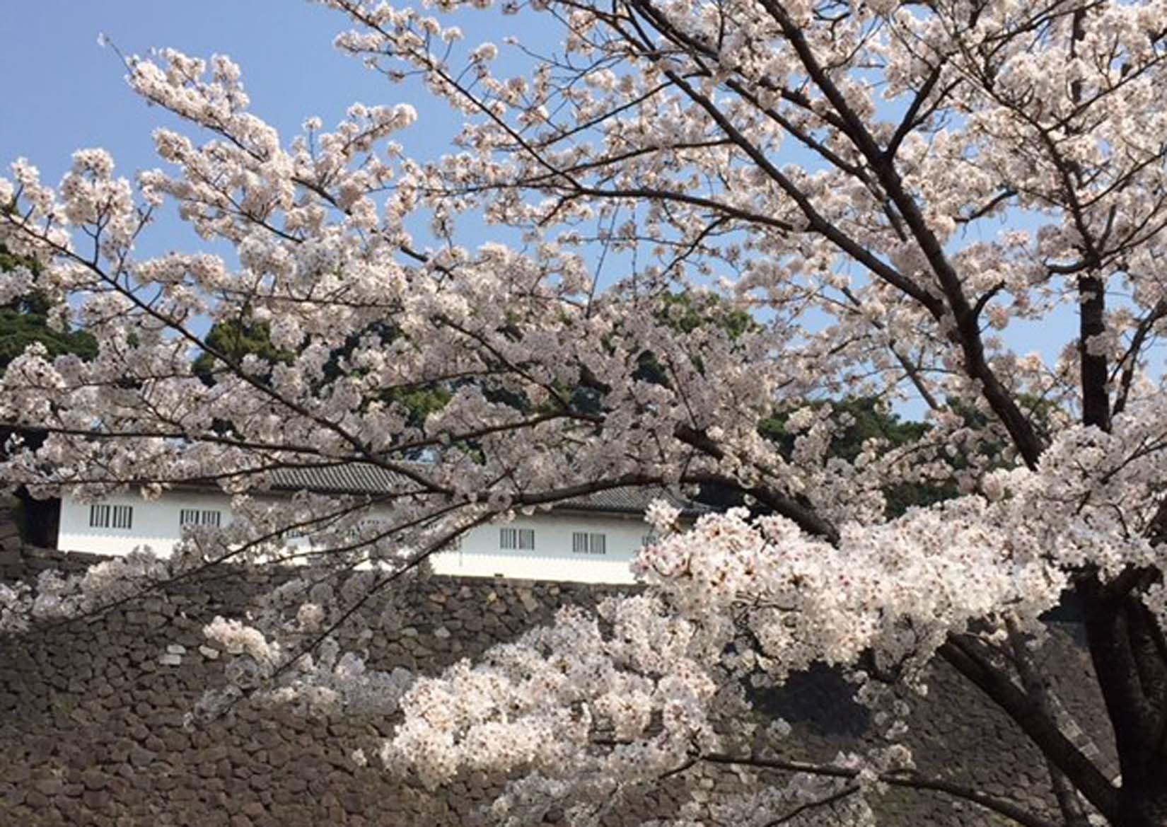 東京 2/2_e0215179_17360999.jpg