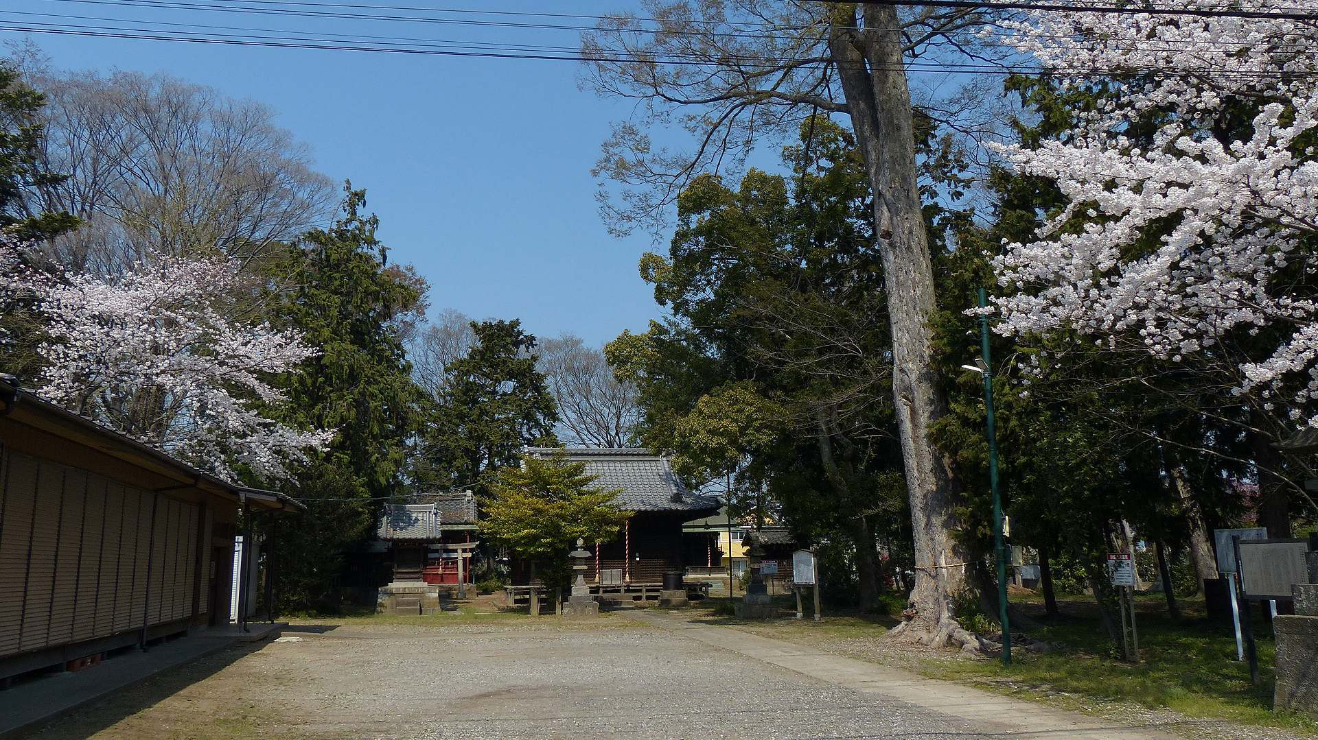 お寺の次は神社です_a0185081_09325156.jpg