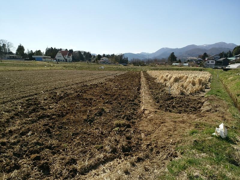 農作業_e0161791_19463213.jpg