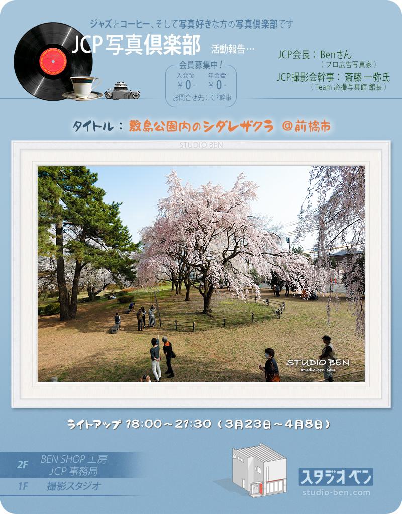 田島功一さんの個展 と 敷島公園のしだれ桜_c0210599_00371808.jpg