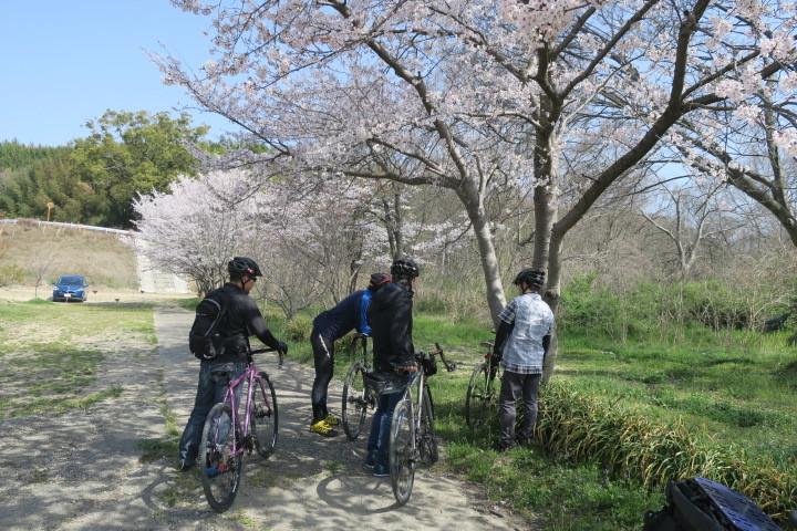 SURLY × FARM 春の試乗会&早朝ライド 開催中!_c0132901_12590392.jpg