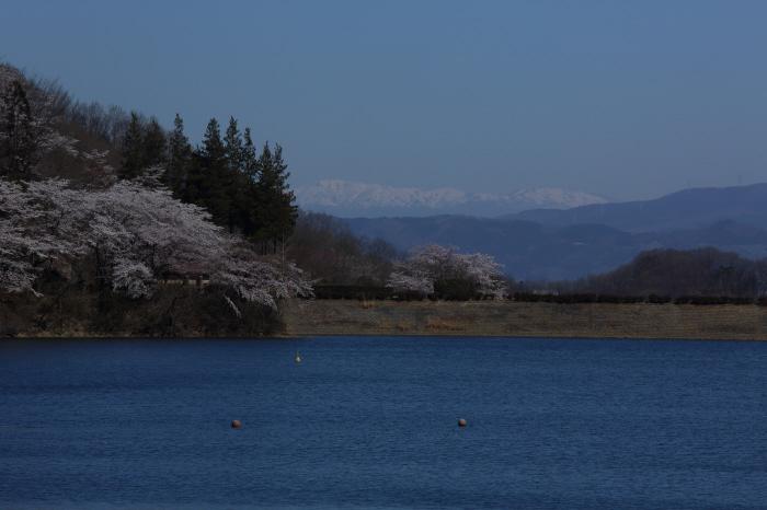湖畔の朝 _a0357206_20001542.jpg