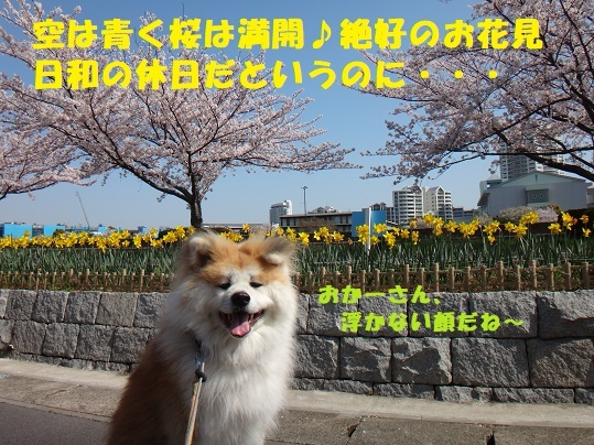 f0121712_14425875.jpg