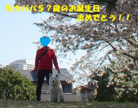 f0121712_14505071.jpg