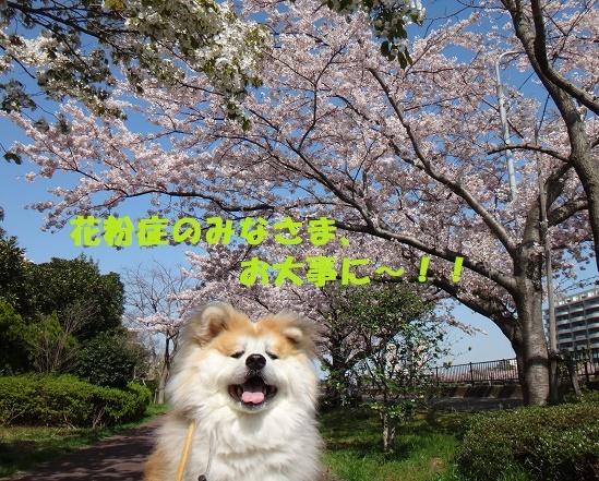 f0121712_15002001.jpg