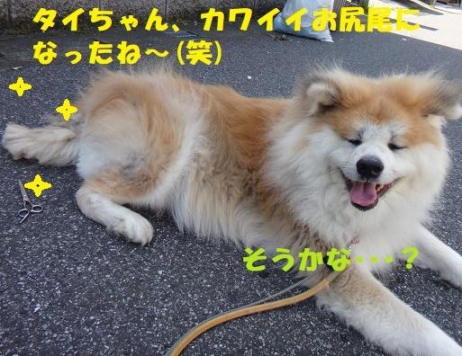 f0121712_15154648.jpg