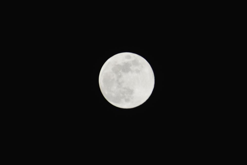 2018.3.31 月に願いを【Blue moon】_f0250322_2241870.jpg