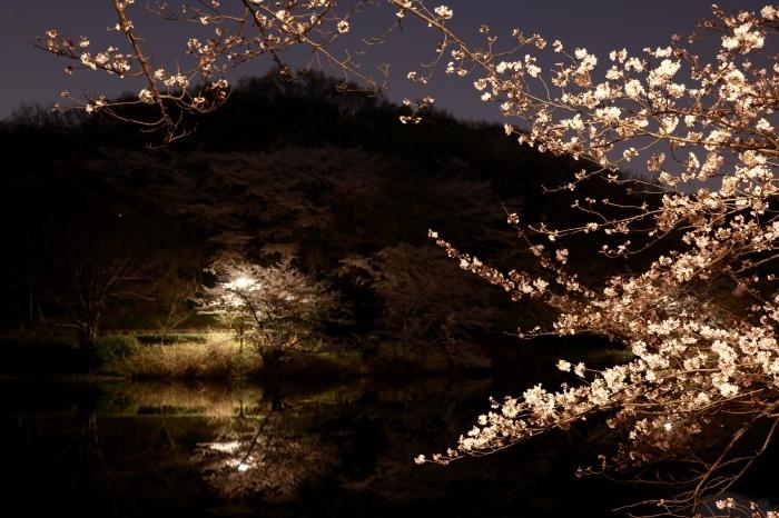【三ツ池公園】_f0348831_08583405.jpg