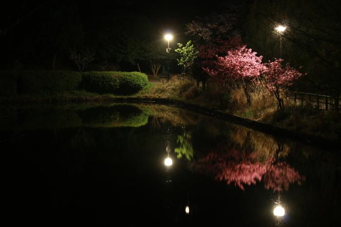 【三ツ池公園】_f0348831_08583658.jpg