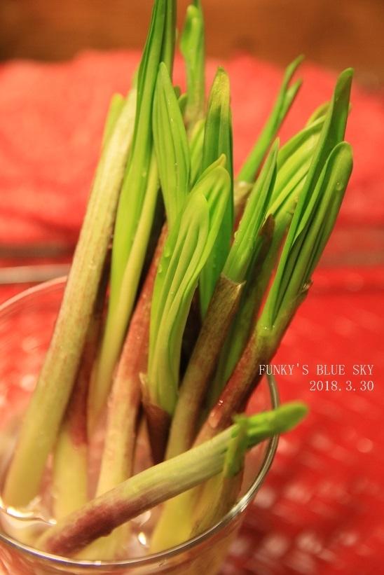 春の庭* & 春の食材_c0145250_08510204.jpg