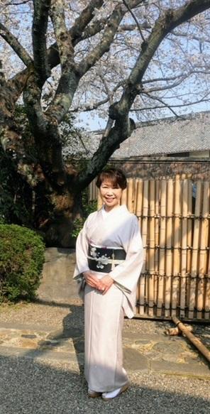 桜の下のお客様・桜色のきものに桜の帯・大島に絞りの帯_f0181251_1046799.jpg