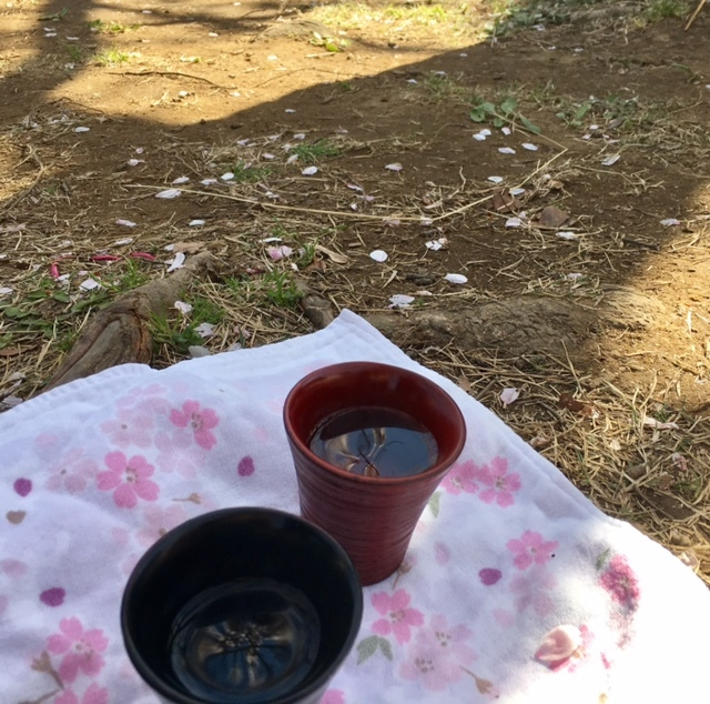 hanami dating その1 北の丸公園~千鳥ヶ淵_a0165160_15324003.jpg