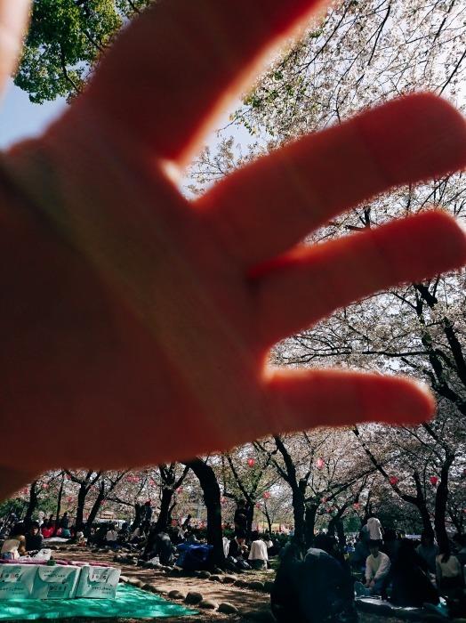 花より団子_a0272765_15560613.jpg