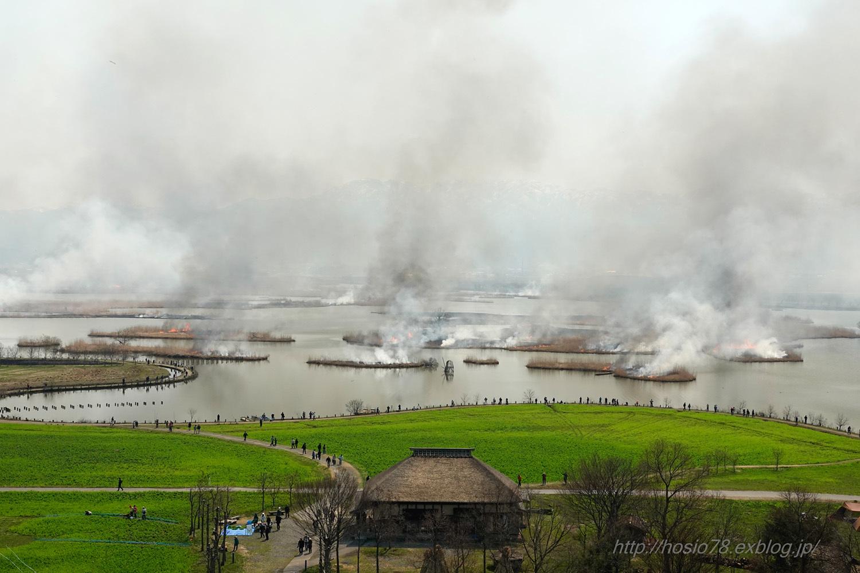 福島潟のヨシ焼_e0214470_17315251.jpg