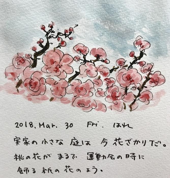 花盛り_f0072976_01110226.jpeg