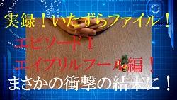 f0287177_033077.jpg