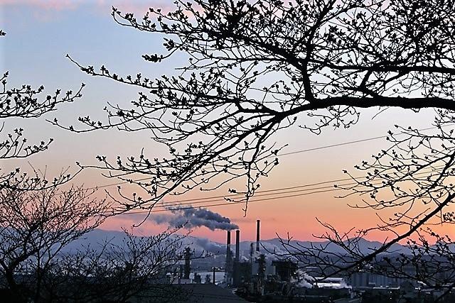 藤田八束の鉄道写真@がんばれ石巻、復興に向かう石巻、港に活気が帰ってくる日、鉄道写真_d0181492_23434095.jpg