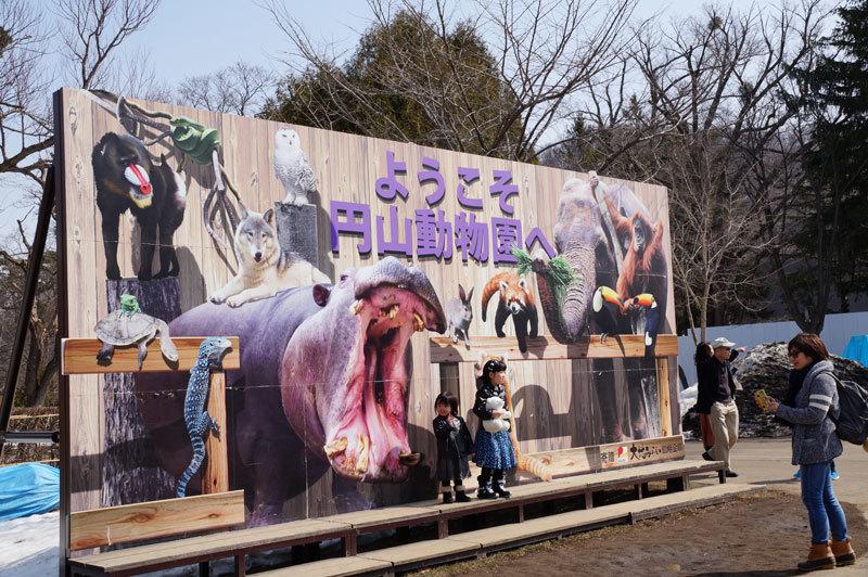 円山動物園_d0162994_08035530.jpg