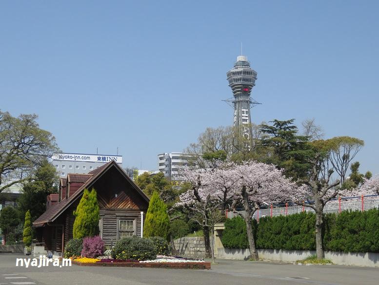 天王寺動物園(3.29 木)続き_f0002743_2104010.jpg