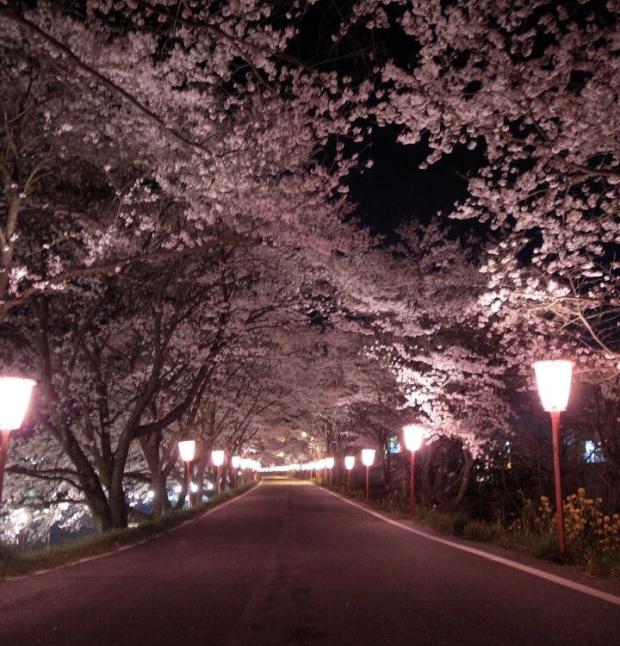 4月のお休みとその他変更日のお知らせ_f0331651_01385307.jpg
