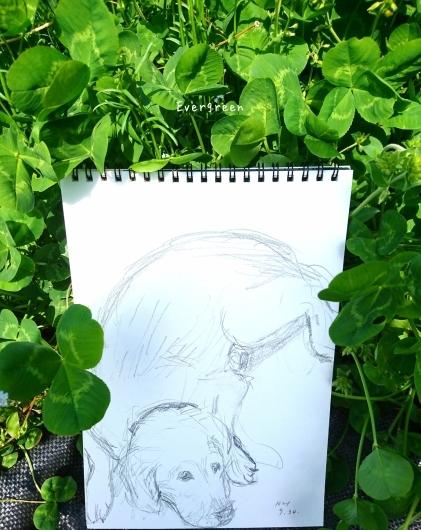 次は『絵』を描くのだ。_d0362666_17020549.jpg