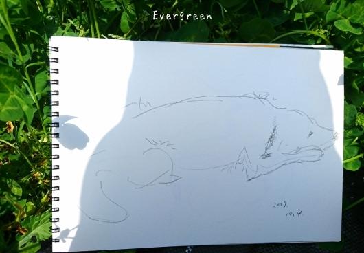 次は『絵』を描くのだ。_d0362666_17022403.jpg