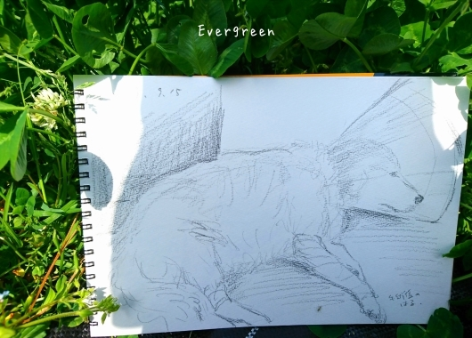 次は『絵』を描くのだ。_d0362666_17024317.jpg