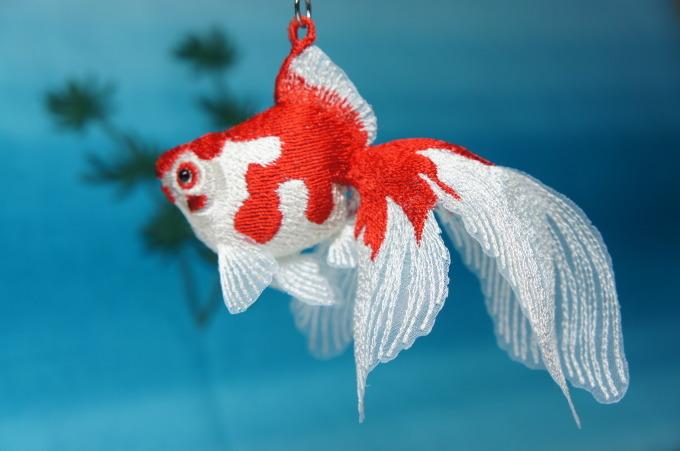 金魚の嫁入り♪_e0385587_23593367.jpg