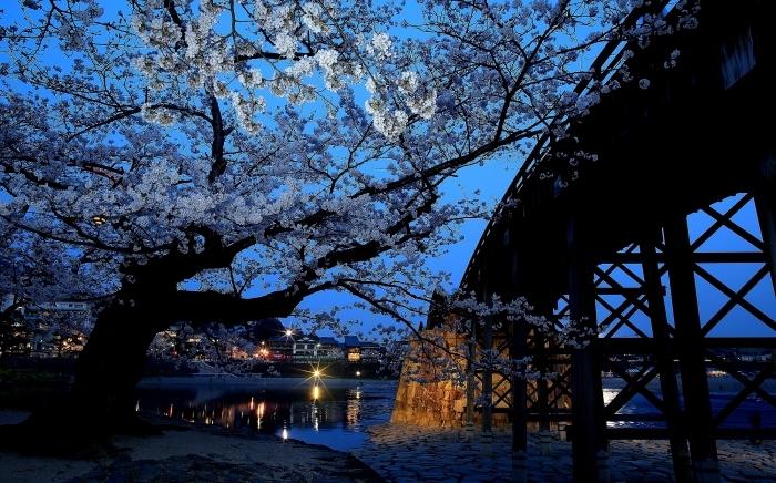 """春爛漫 """"錦帯橋の夜桜"""" そのⅠ_a0140608_07594918.jpg"""