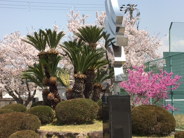 春景色_a0245110_11245570.jpg