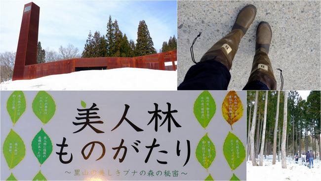 「雪の上を歩くって楽しい。美人林でスノーシュー!」_a0000029_22462725.jpg