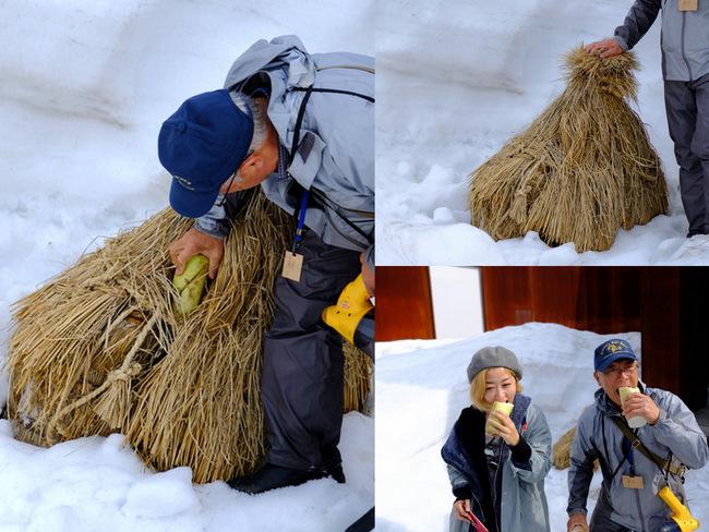 「雪の上を歩くって楽しい。美人林でスノーシュー!」_a0000029_22482926.jpg