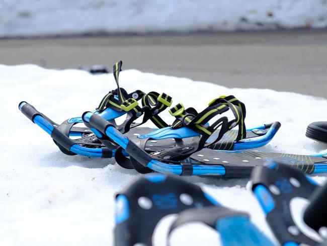 「雪の上を歩くって楽しい。美人林でスノーシュー!」_a0000029_22502453.jpg