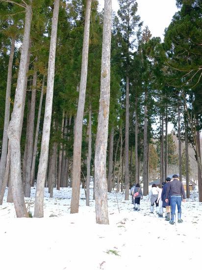 「雪の上を歩くって楽しい。美人林でスノーシュー!」_a0000029_22512503.jpg