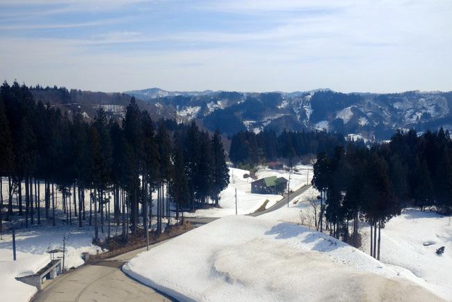 「雪の上を歩くって楽しい。美人林でスノーシュー!」_a0000029_22560462.jpg