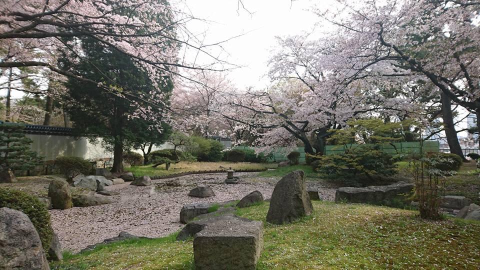 名古屋城 春まつり散策!_f0373339_14261879.jpg