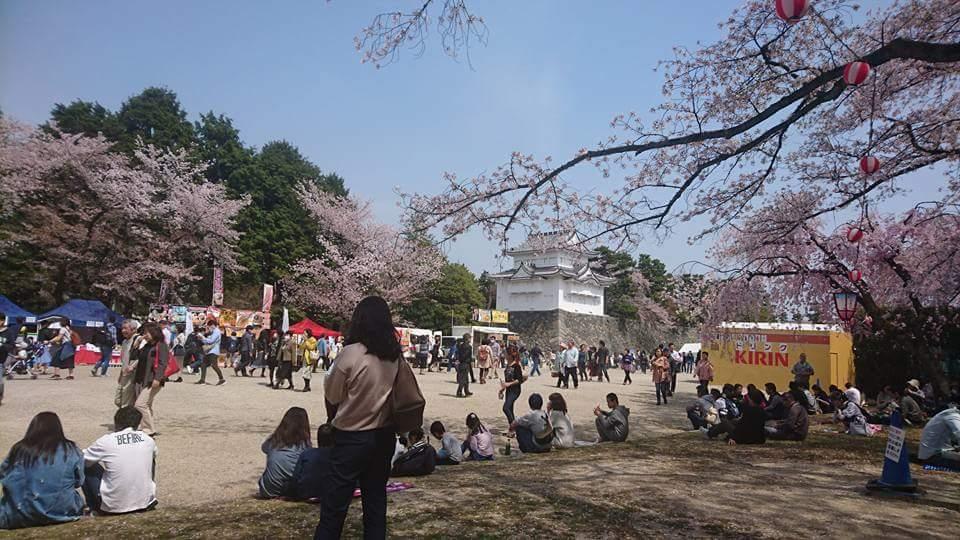 名古屋城 春まつり散策!_f0373339_1482276.jpg