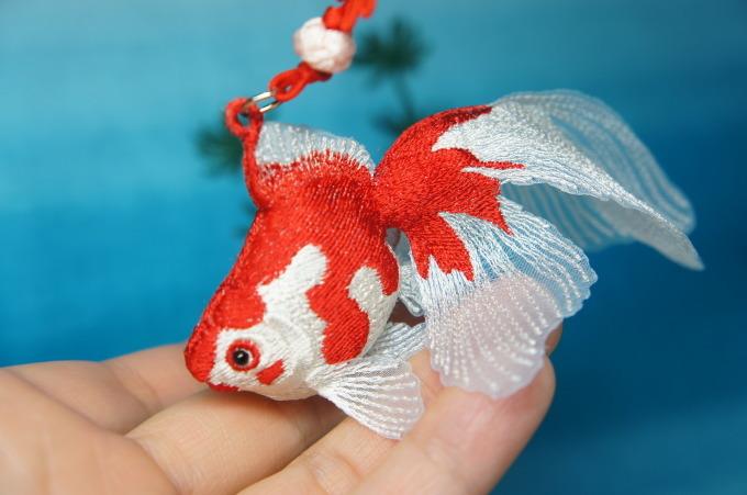 金魚の嫁入り♪_e0385587_00043318.jpg