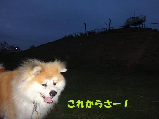f0121712_08100359.jpg