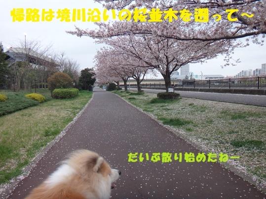 f0121712_08411013.jpg