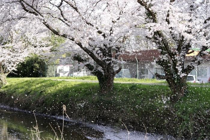 【東武動物公園】_f0348831_07192356.jpg