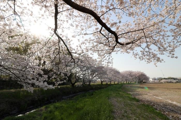 【東武動物公園】_f0348831_07192927.jpg