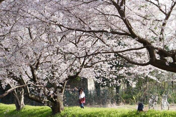 【東武動物公園】_f0348831_07193389.jpg